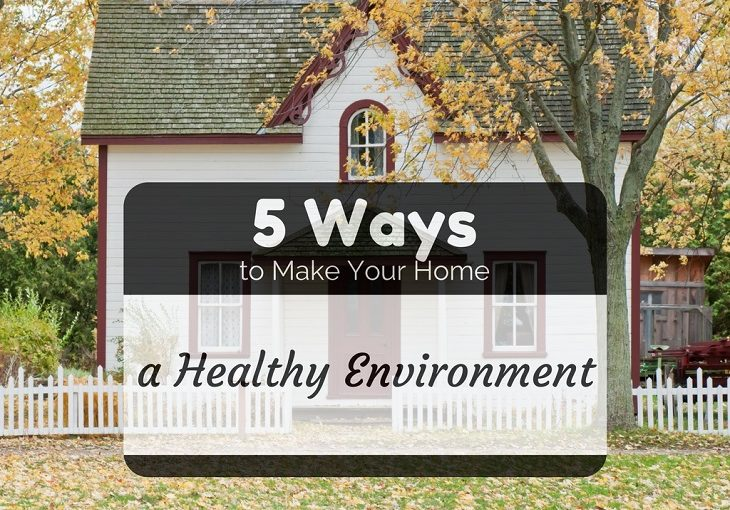 make home healthy environment