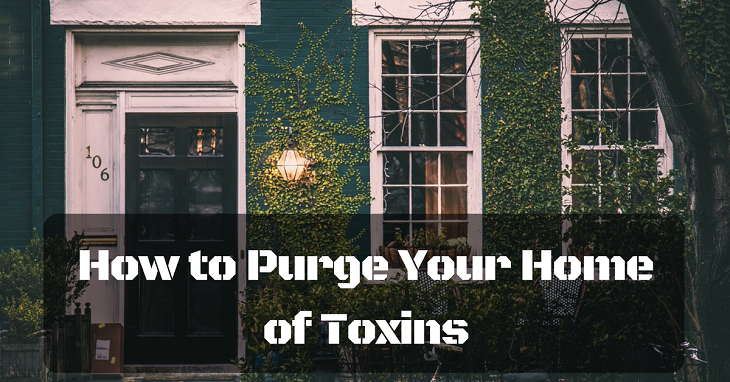 how to purge your home of toxins
