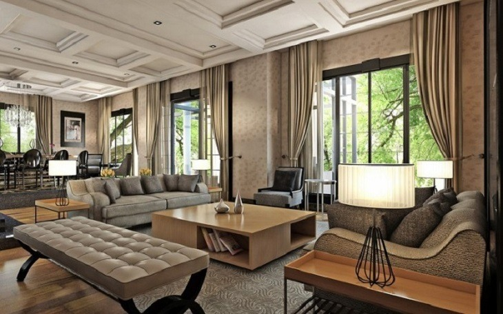 Sophisticated Living Room Design Ideas