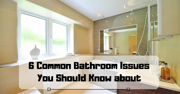 Common Bathroom Issues